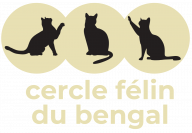 Cercle felin du bengal